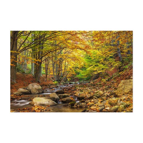 Noir Gallery Bulgaria Autumn Forest Landscape Unframed Art Print/Poster