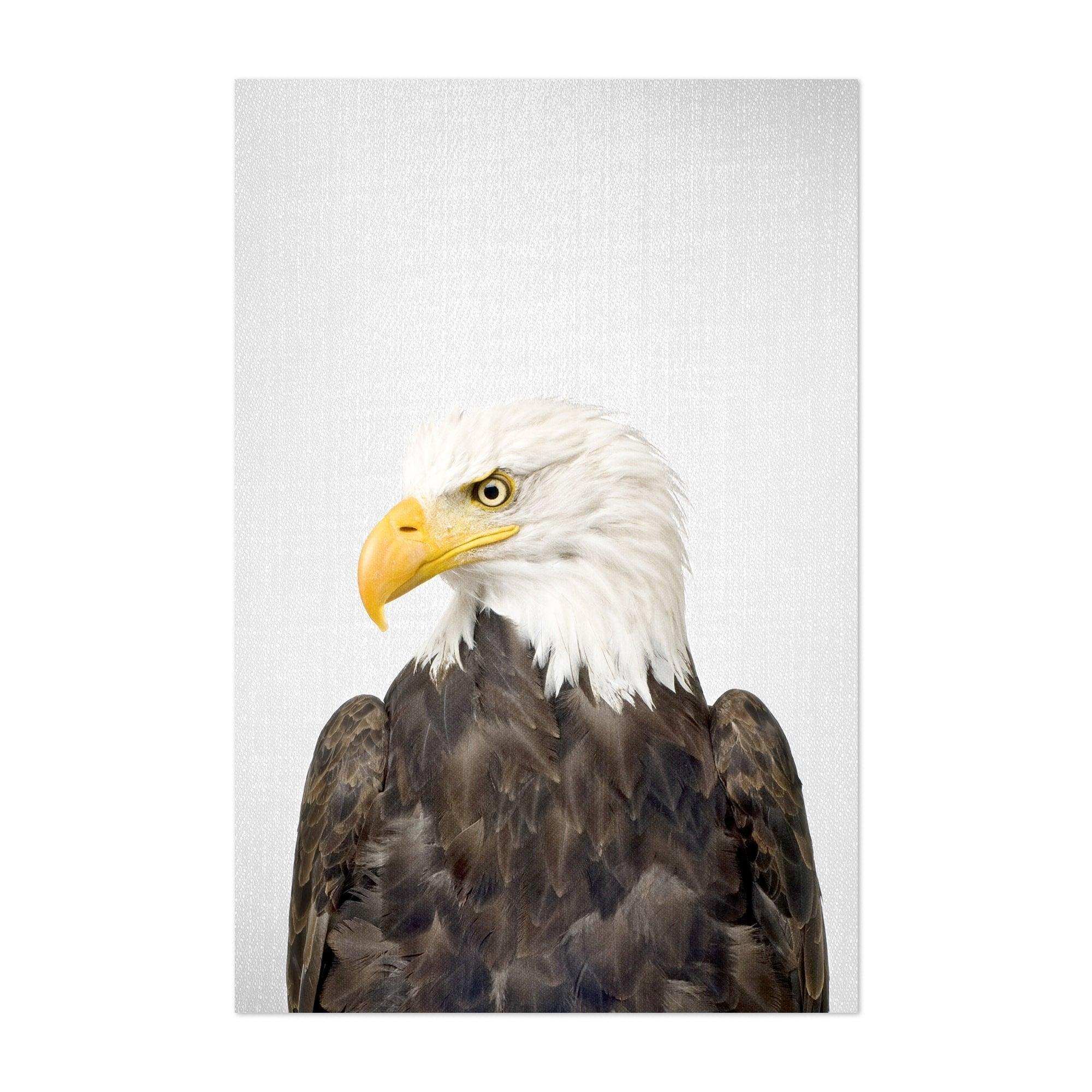 Shop Noir Gallery American Bald Eagle Patriot Bird Unframed Art