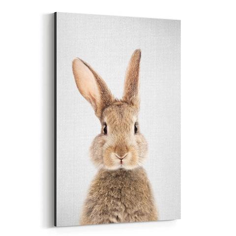 Noir Gallery Rabbit Nursery Peeking Animal Canvas Wall Art Print