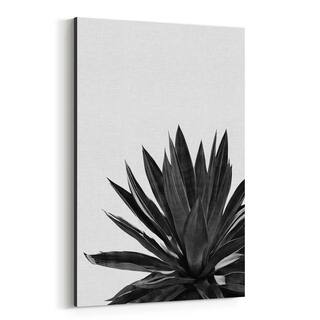Noir Gallery Black Agave Plant Botanical Canvas Wall Art Print
