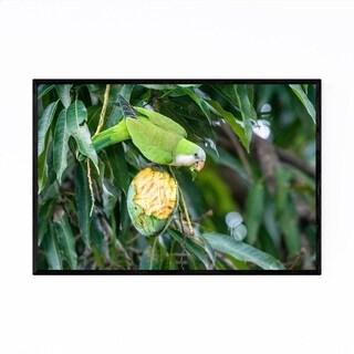 Noir Gallery Green Parrot Pantanal Brazil Framed Art Print