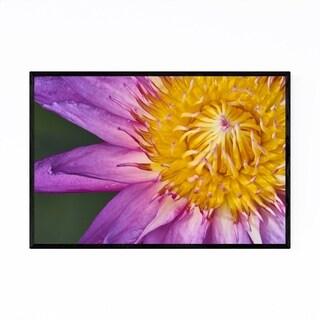 Noir Gallery Lotus Flower Botanical Nature Framed Art Print