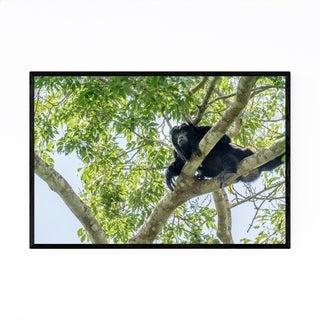 Noir Gallery Black Howler Monkey Wildlife Framed Art Print