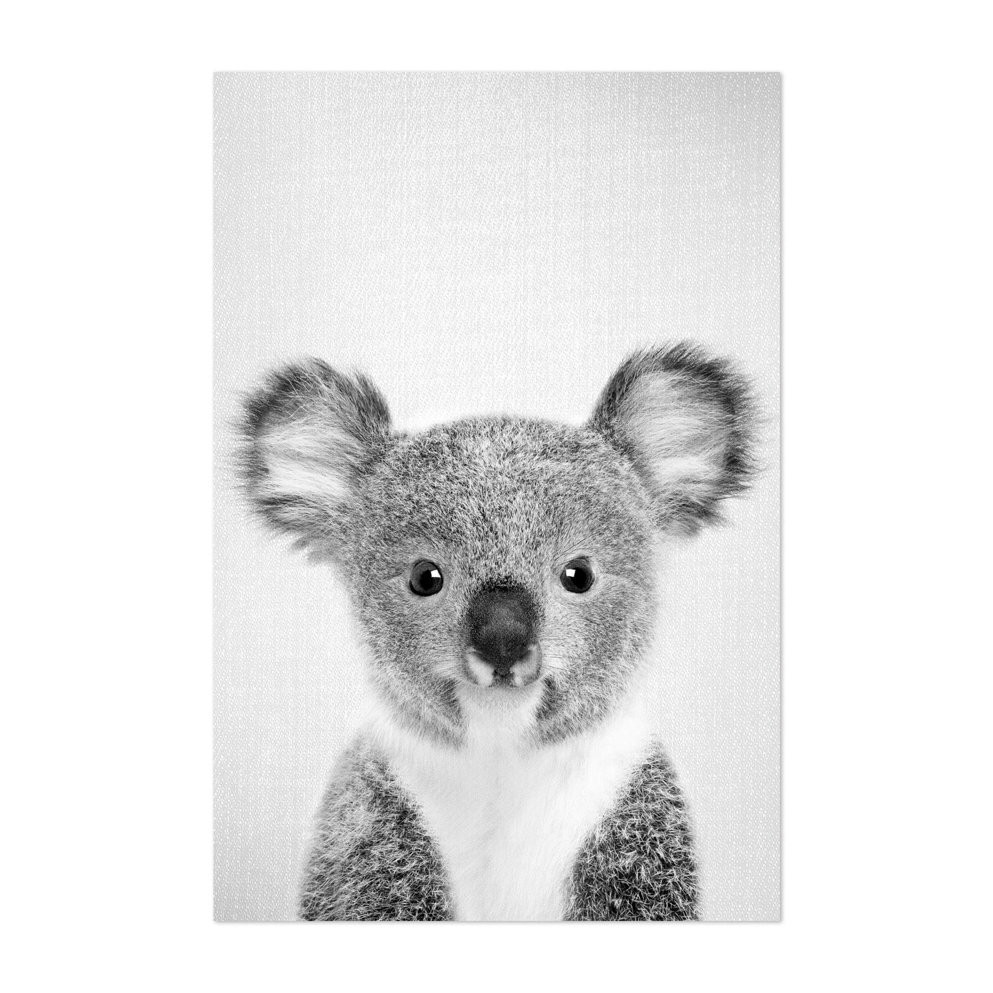 Shop Noir Gallery Cute Baby Koala Peekaboo Animal Unframed Art