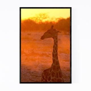 Noir Gallery Namibia Africa Giraffe Wildlife Framed Art Print