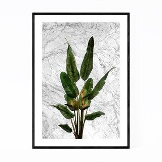 Noir Gallery Bird of Paradise Plant Botanical Framed Art Print