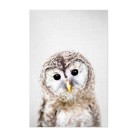 Noir Gallery Baby Owl Peekaboo Nursery Animal Unframed Art Print/Poster