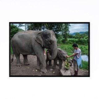 Noir Gallery Elephants Chiang Mai Thailand Framed Art Print