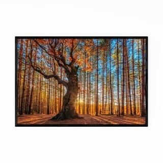 Noir Gallery Bulgaria Autumn Forest Landscape Framed Art Print