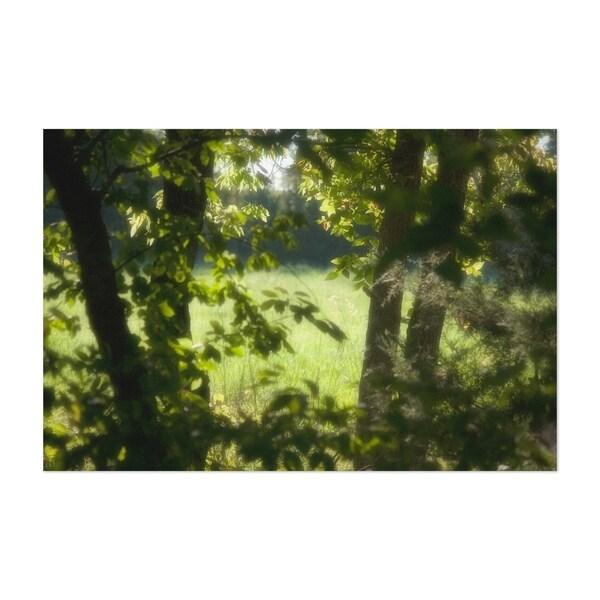 Noir Gallery Spring Meadow Nature Landscape Unframed Art Print/Poster