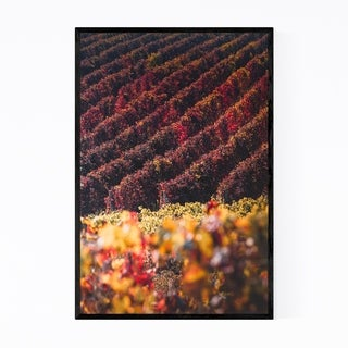 Noir Gallery Tuscany Italy Vineyard Nature Framed Art Print