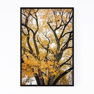 Noir Gallery Fall Autumn Color Tree Foliage Framed Art Print