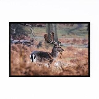 Noir Gallery Deer Animal Wildlife London Framed Art Print