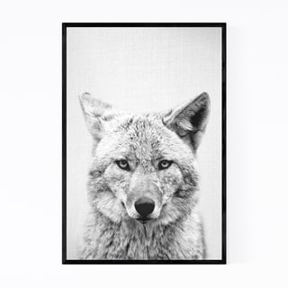 Noir Gallery Cute Coyote Peekaboo Animal Framed Art Print