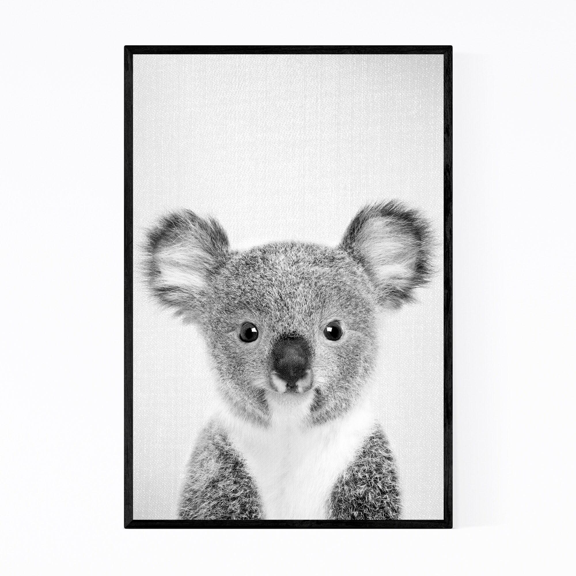 Shop Noir Gallery Cute Baby Koala Peekaboo Animal Framed Art Print