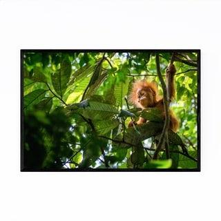 Noir Gallery Orangutan Wildlife Indonesia Framed Art Print