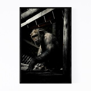 Noir Gallery Chimpanzee Animal Wildlife Framed Art Print