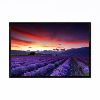 Noir Gallery Bulgaria Lavender Field Rural Framed Art Print