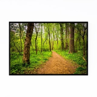 Noir Gallery Pennsylvania Forest Trail Nature Framed Art Print