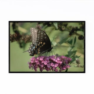 Noir Gallery Swallowtail Butterfly Animal Framed Art Print