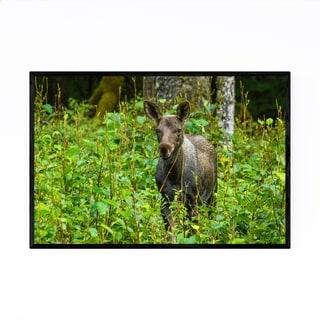 Noir Gallery Moose Gustavus Alaska Wildlife Framed Art Print
