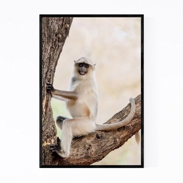 Noir Gallery Gray Langur Monkey Wildlife Framed Art Print