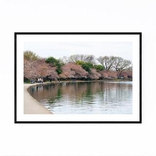 Noir Gallery Washington DC Cherry Blossoms Framed Art Print
