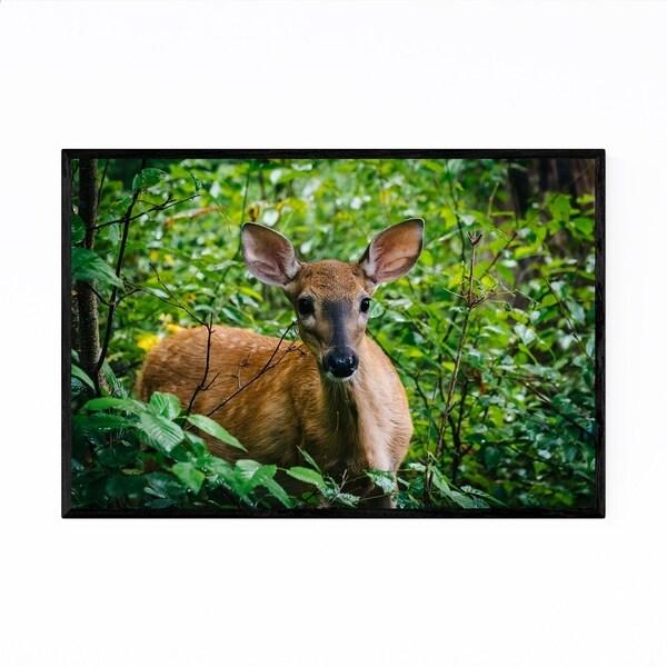 Noir Gallery Shenandoah Forest Deer Animal Framed Art Print