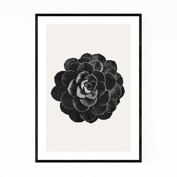 Noir Gallery Succulent Plant Botanical Framed Art Print
