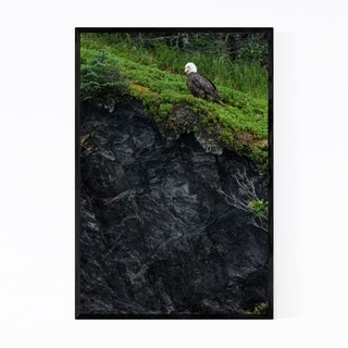 Noir Gallery Bald Eagle Bird Alaska Wildlife Framed Art Print