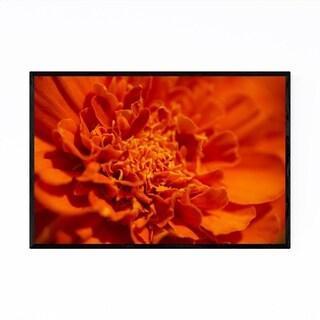 Noir Gallery Marigold Flower Botanical Nature Framed Art Print