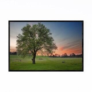 Noir Gallery Bulgaria Tree Field Meadow Rural Framed Art Print