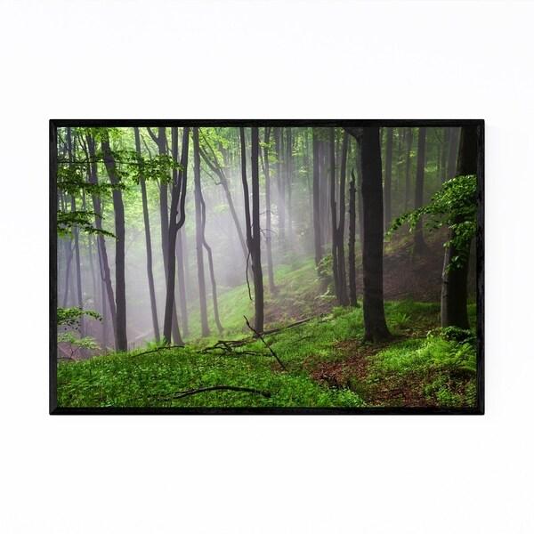 Noir Gallery Bulgaria Spring Forest Nature Framed Art Print