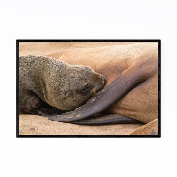 Noir Gallery Namibia Brown Fur Seal Wildlife Framed Art Print