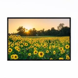Noir Gallery Jarrettsville Maryland Sunflower Framed Art Print