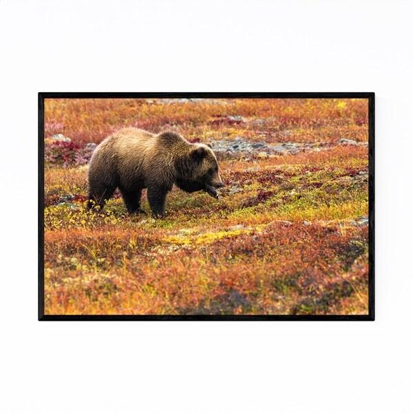 Noir Gallery Grizzly Bear Yukon Canada Animal Framed Art Print