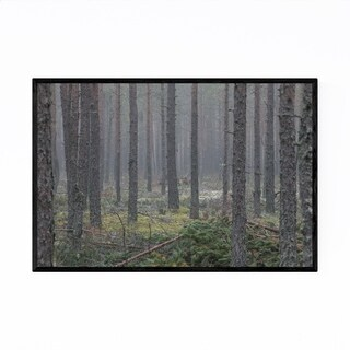 Noir Gallery Pine Forest Foggy Finland Nature Framed Art Print