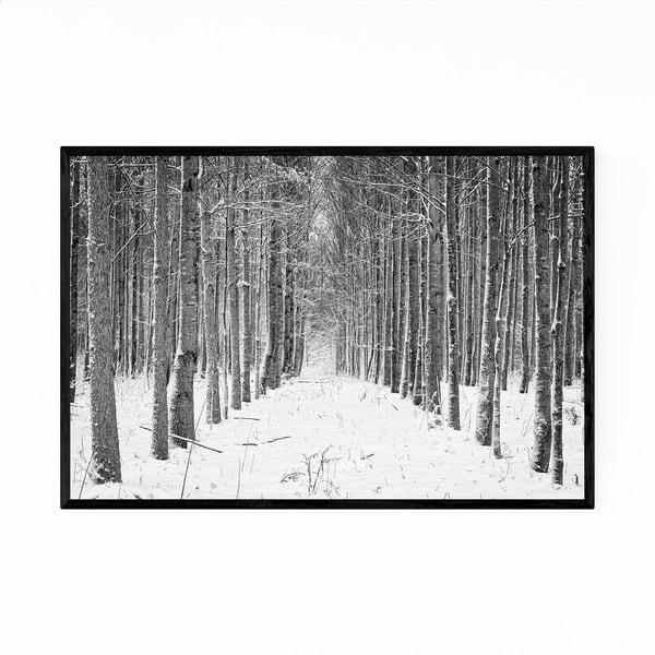 Noir Gallery Rural Indiana Snowy Trees Nature Framed Art Print