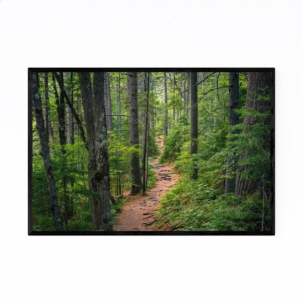 Noir Gallery White Mountains Trail in Woods Framed Art Print