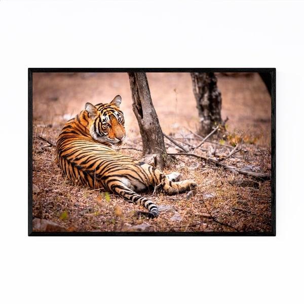 Noir Gallery Tiger Wildlife Animal India Framed Art Print