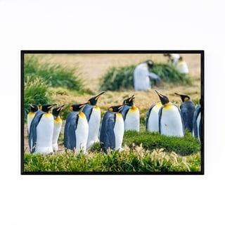 Noir Gallery Pengunins Animal Wildlife Chile Framed Art Print