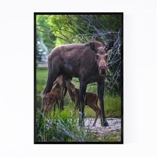Noir Gallery Moose Animal Wildlife Wyoming Framed Art Print