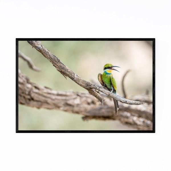 Noir Gallery Bee-Eater Bird Wildlife Africa Framed Art Print