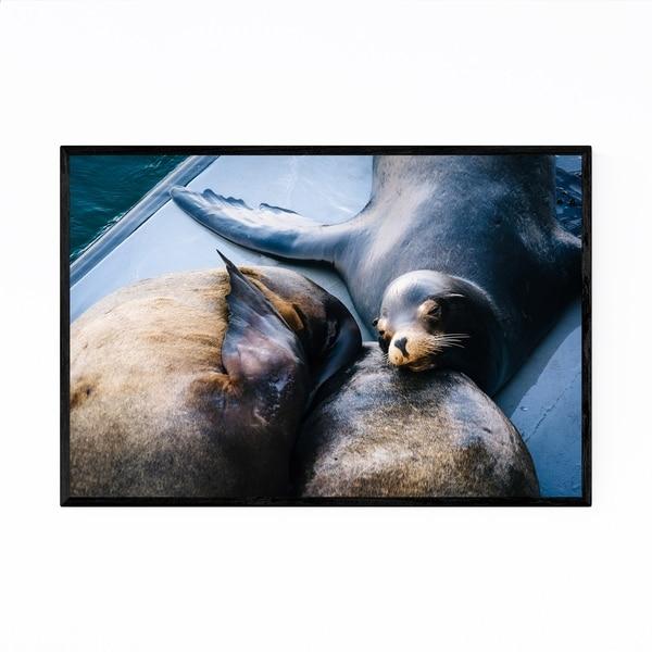 Noir Gallery Sea Lions Santa Cruz California Framed Art Print