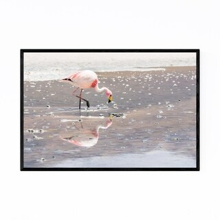 Noir Gallery Flamingo Bird Wildlife Bolivia Framed Art Print