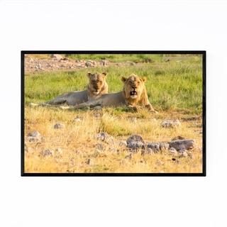 Noir Gallery Namibia Africa Lions Wildlife Framed Art Print