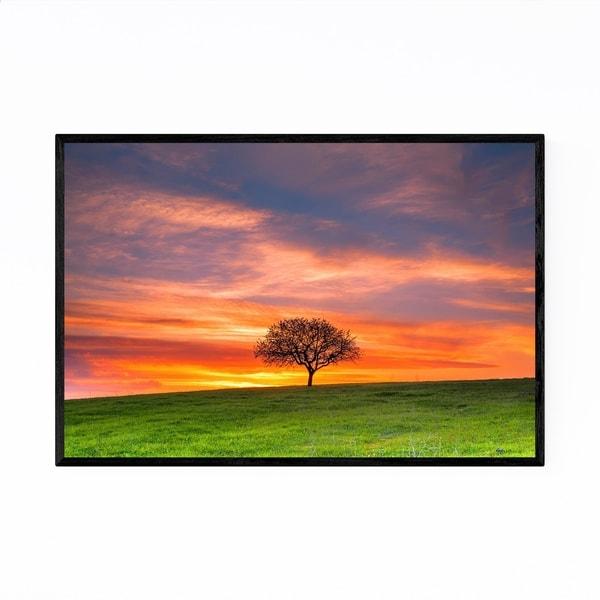 Noir Gallery Veslie Bulgaria Tree in Field Framed Art Print