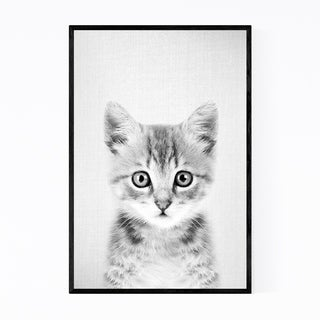 Noir Gallery Kitten Peeking Nursery Animal Framed Art Print