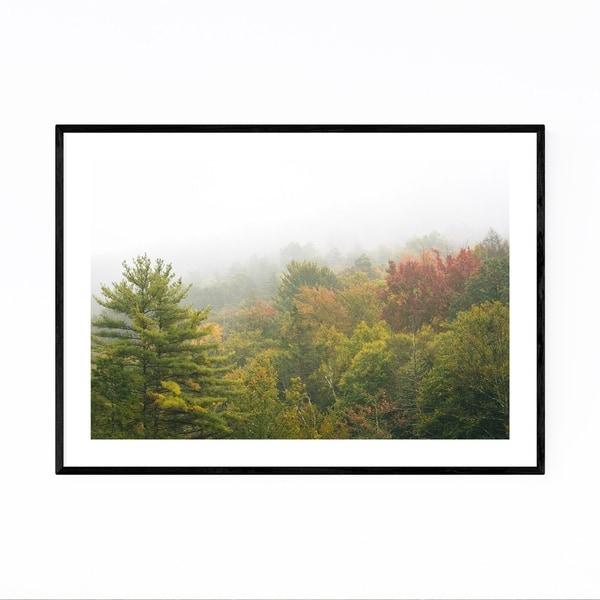 Noir Gallery Trees in Fog Autumn Fall Color Framed Art Print
