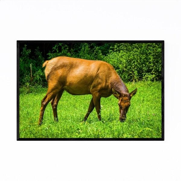 Noir Gallery Great Smoky Mountains Elk Photo Framed Art Print